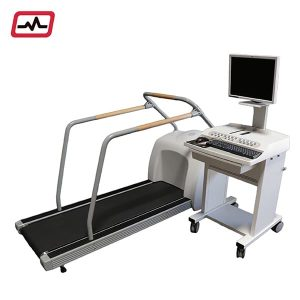 GE CASE STRESS SYSTEM 6.73 T-2100 TREADMILL 001